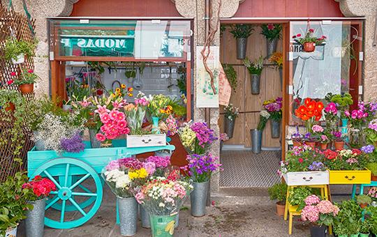 Proyecto de interiorismo para floristería de 9 metros cuadrados